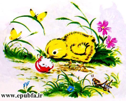 جوجه کوچولو و سیب سرخ-کتاب قصه تصویری کودکان-داستان کودکانه ایپابفا (18).jpg