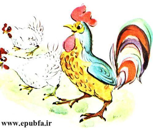 قصه کودکانه حنایی و جوجههایش-کتاب قصه کودکانه-ایپابفا قصه و داستان12