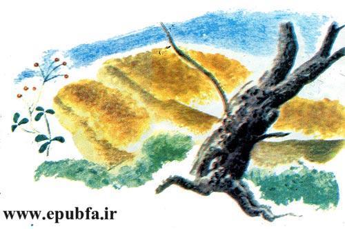 قصه کودکانه خرس دماغ سوخته برای کودکان ایپابفا 12
