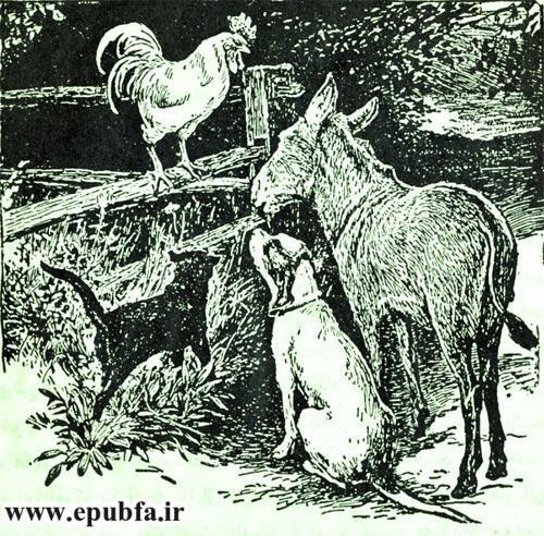مجموعه قصه های خر آوازخوان نوشته برادران گریم-کتاب های طلایی ایپابفا5