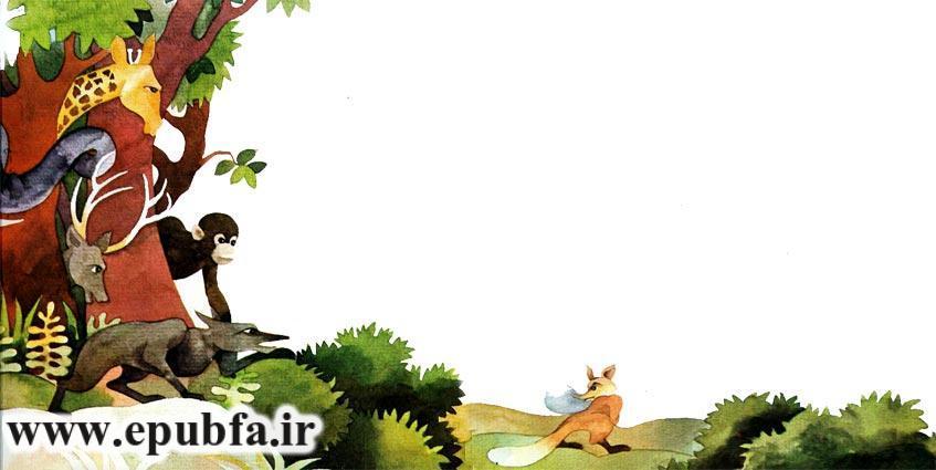 قصه کودکانه دمم کو برای کودکان ایپابفا8