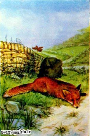 قصه روباه و گرگ برای کودکان و خردسالان4