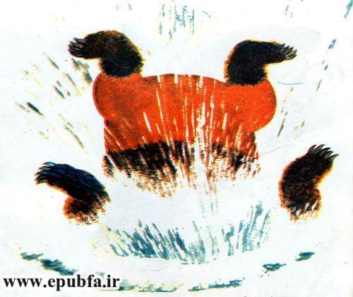 قصه کودکانه خرس دماغ سوخته برای کودکان ایپابفا 7
