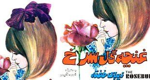 کتاب قصه صوتی«غنچه گل سرخ» یا «زیبای خفته» محصول سوپراسکوپ2