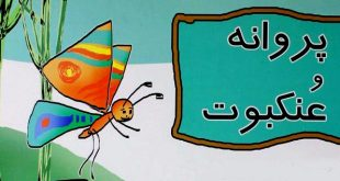 قصه قشنگ و آموزنده «پروانه و عنکبوت» برای کودکان