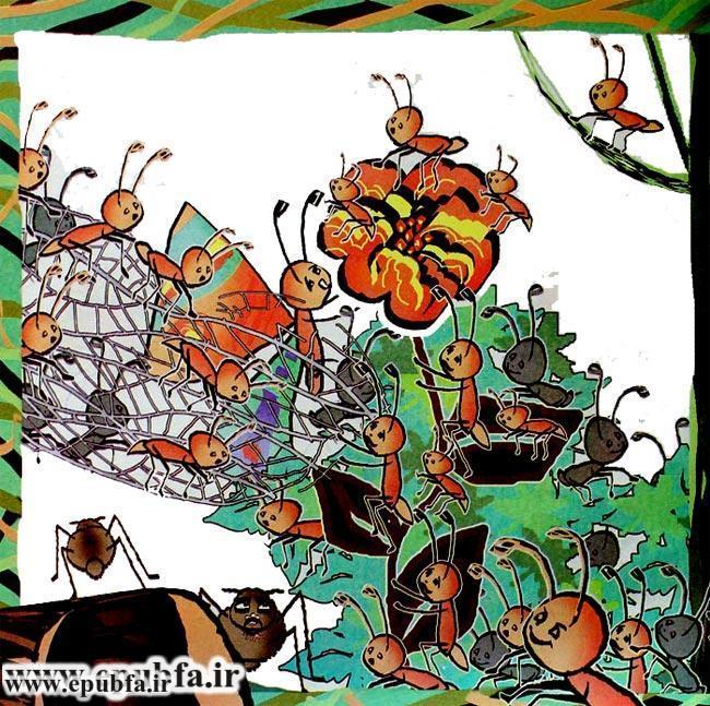 قصه قشنگ و آموزنده «پروانه و عنکبوت» برای کودکان 8