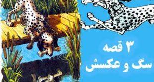 کتاب قصه عامیانه سگ و عکسش