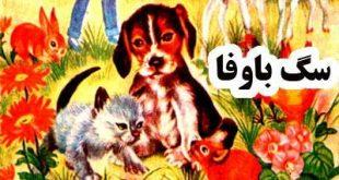 افسانه های ایرانی و قصه کودکان سگ باوفا ، سه حيوان حقشناس ،پیرزن و روباه