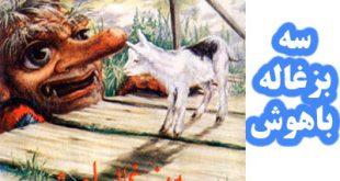 جلد کتاب قصه کودکانه سه بزغاله باهوش