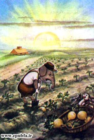 کتاب قصه کودکانه سه بچه فیل - بچه فیل به مزرعه ترب می رود