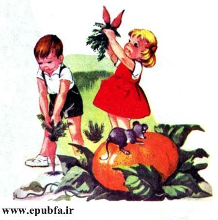 کتاب قصه کودکانه سوفیا و دوستانش - بچه ها در مزرعه هویج و کدو برداشت می کنند.