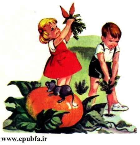 کتاب قصه کودکانه سوفیا و دوستانش - برداشت هویج در مزرعه