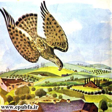 کتاب قصه کودکانه شکست باز-ارشیو قصه و داستان ایپابفا-باز شکاری به سمت طعمه شیرجه می رود