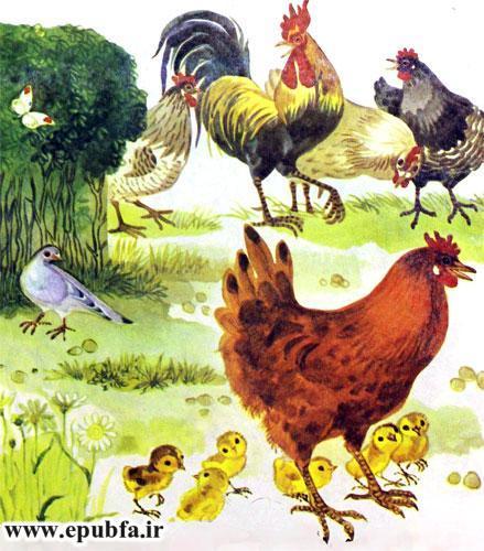 کتاب قصه کودکانه شکست باز-ارشیو قصه و داستان ایپابفا-مرغ و خروس های محلی