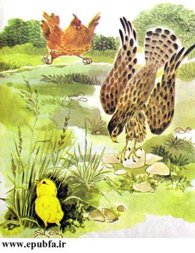 کتاب قصه کودکانه شکست باز-ارشیو قصه و داستان ایپابفا-باز شکاری به شکار خود حمله می کند