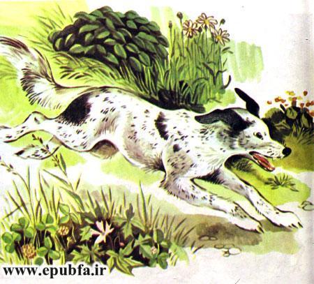 کتاب قصه کودکانه شکست باز-ارشیو قصه و داستان ایپابفا-سگ محلی به باز شکاری حمله می کند