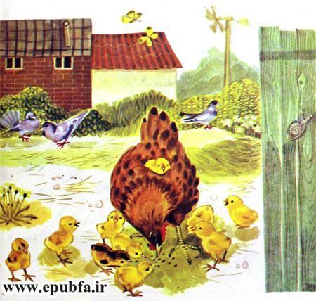کتاب قصه کودکانه شکست باز-ارشیو قصه و داستان ایپابفا-مرغ کرچ و جوجه هایش