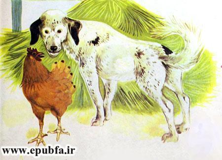 کتاب قصه کودکانه شکست باز-ارشیو قصه و داستان ایپابفا-سگ مهربان و مرغ محلی