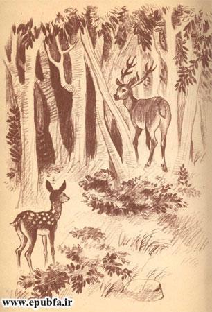 گوزن مادر و بچه گوزن در جنگل به همدیگر می رسند- آرشیو قصه و داستان ایپابفا