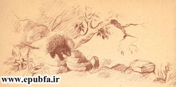 یک جوجه تیغی بزرگ از دور می آمد- آرشیو قصه و داستان ایپابفا