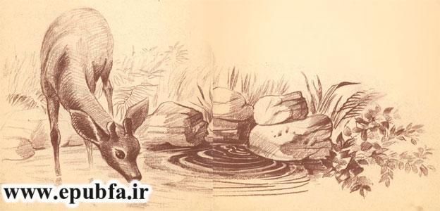 گوزن به همراه مادرش به کنار چشمه می رود و شاخ هایش را می بیند- آرشیو قصه و داستان ایپابفا