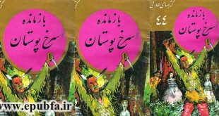 جلد کتاب داستان تاریخی آخرین موهیکان