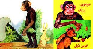 میمون زرنگ و خرس تنبل