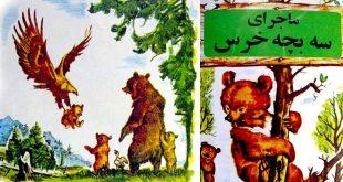 ماجرای سه بچه خرس