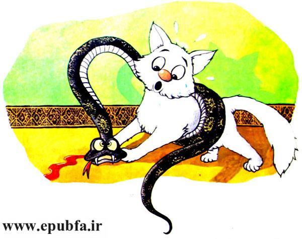 گربه سفید و مار سیاه باهم گلاویز می شوند و دعوا می کنند -قصه کودکانه ایپابفا