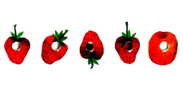 کرم ابریشم میوه ها و توت فرنگی ها را می خورد - قصه کودکانه ایپابفا