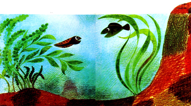 بچه ماهی و بچه قورباغه در حال شنا در برکه آب- قصه کودکانه ایپابفا