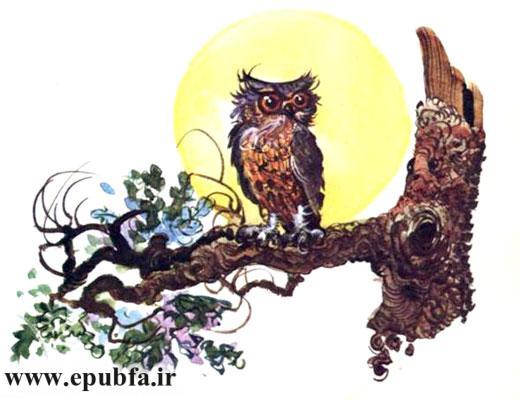 قصه کودکانه درخت کاج نقره ای در جشن کریسمس-جغد روی درخت-ارشیو قصه و داستان ایپابفا