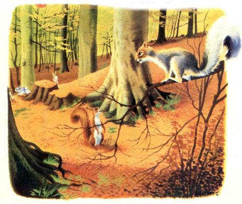قصه کودکانه «سنجاب بازیگوش»-داستانهای مصور رنگی برای کودکان-ارشیو قصه و داستان ایپابفا