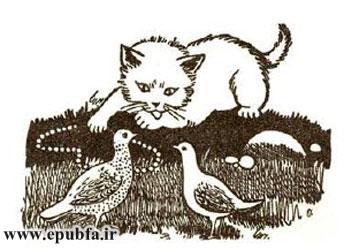 گربه روزهدار-قصههای کِلیلهودِمنه برای بچههای خوب-ایپابفا