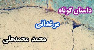 داستان-کوتاه-مرغدانی-محمد-محمدعلی