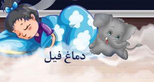 قصه-صوتی-کودکانه-دماغ-فیل-با-صدای-مریم-نشیبا-کاور
