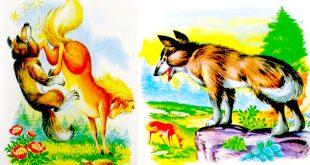 قصه-کودکانه-اسب-و-گرگ
