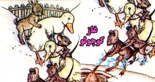 قصه غاز کوچولو و همکاری حیوانات