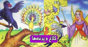 کتاب داستان مصور کودکانه کلاغ و پرندهها