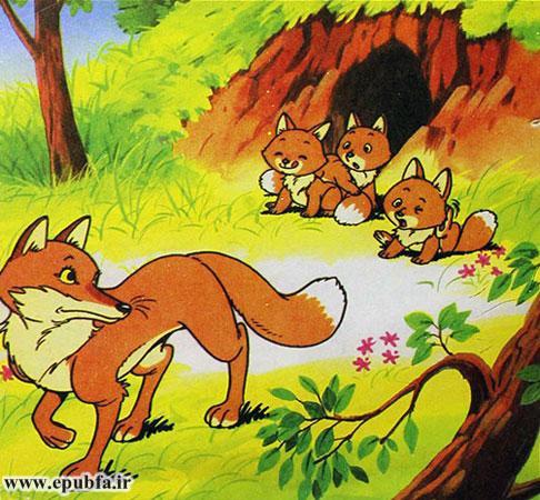روباه بچههایش را تنها گذاشت و خودش بهتنهایی راه افتاد تا برای بچههایش غذایی پیدا کند