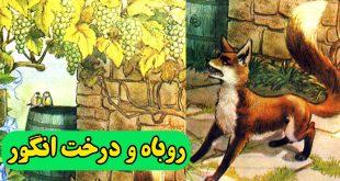 داستان-روباه-و-درخت-انگور-افسانه-ازوپ