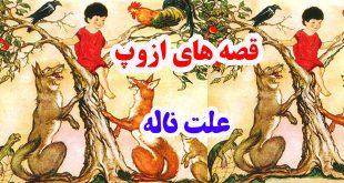 قصههای-ازوپ-علت-ناله