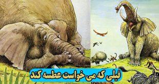 کتاب-داستان-کودکانه-فیلی-که-می-خواست-عطسه-کند