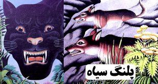 قصه کودکانه پلنگ سیاه (1)