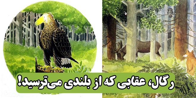 کتاب داستان آموزنده کودکان رگال، عقابی که از بلندی میترسید! (27)